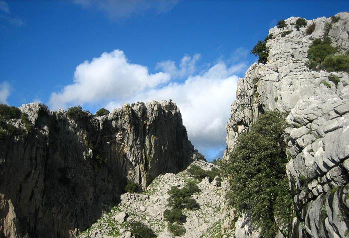 Benaocaz-Salto-del-Cabrero