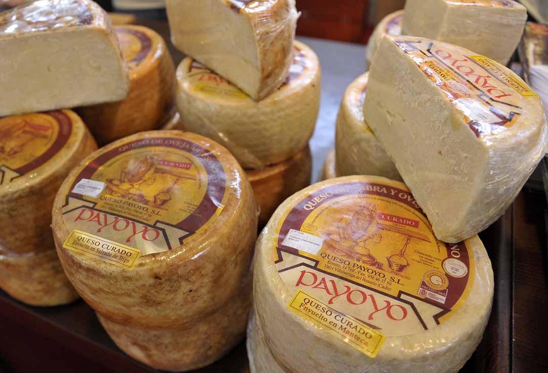 villaluenga-del-rosario-queso-payoyo