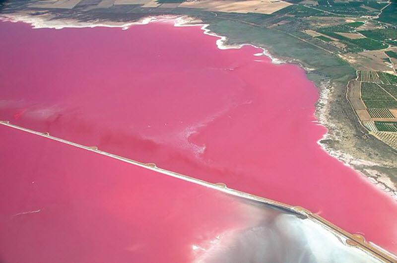 laguna-rosa-vista-panoramica