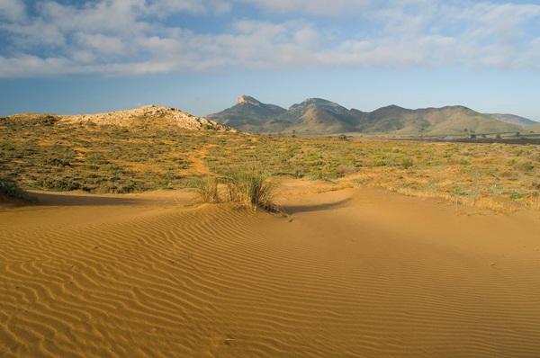 calas-de-calblanque-duna-fosil