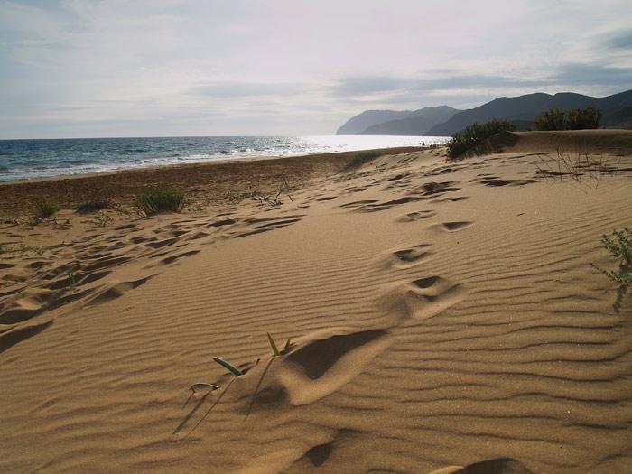 calas-de-calblanque-playa-calblanque