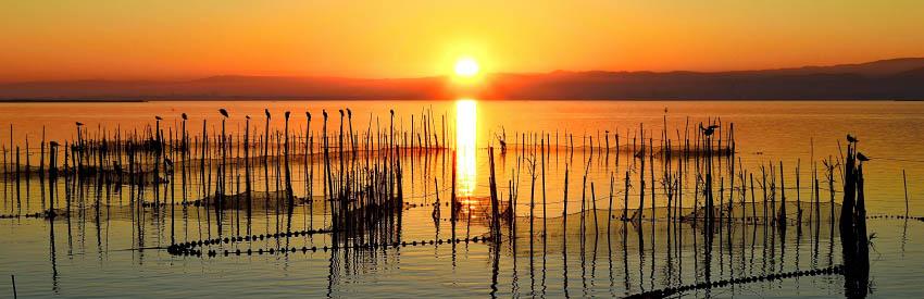 albufera-puesta-sol-9