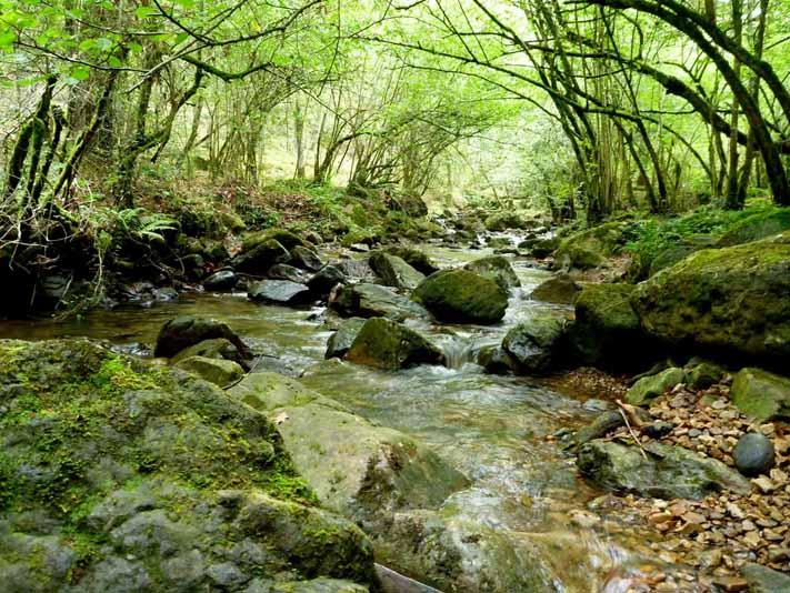 cascadas-lamiña-ruta-2