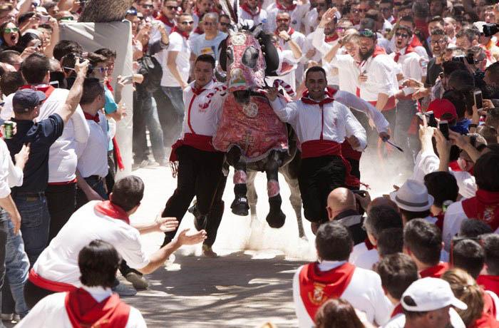 caballos-del-vino-4