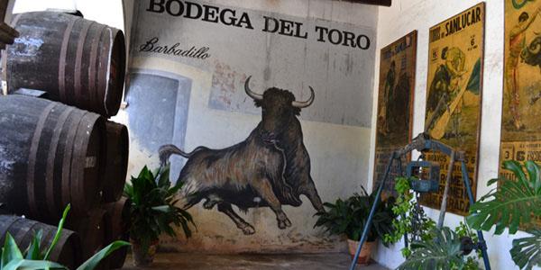 bodega-barbadillo-bodega-del-toro