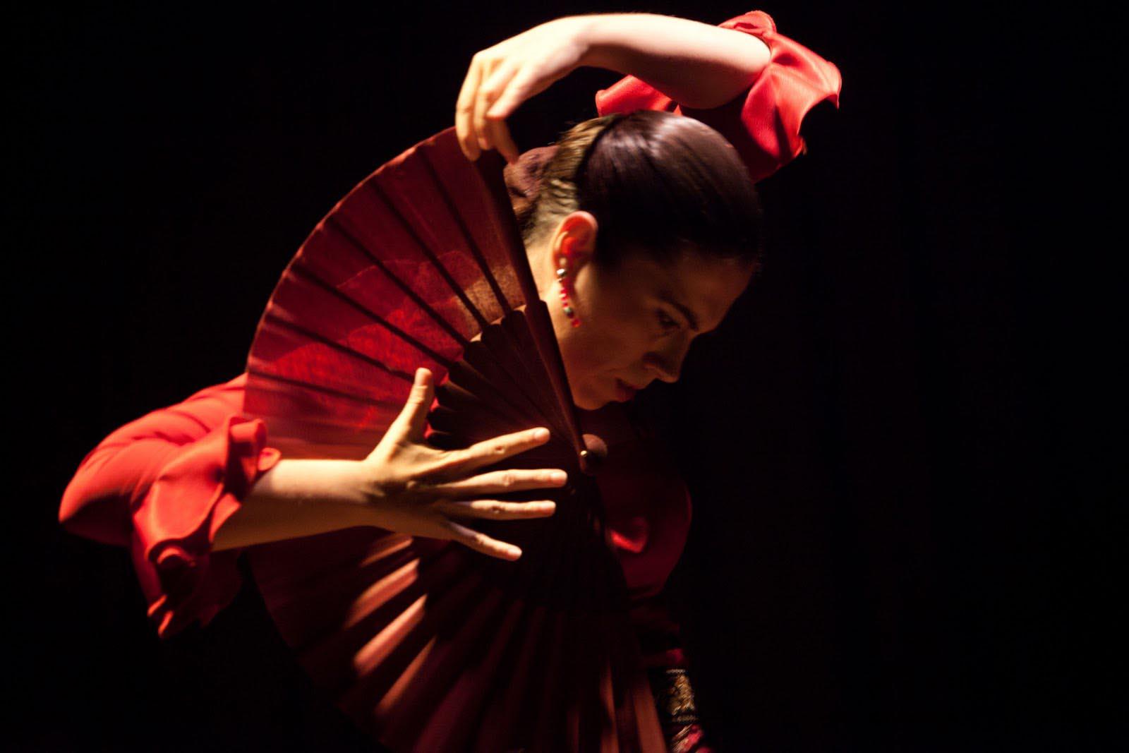 el-abanico-flamenco-2